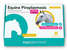 Load image into Gallery viewer, Equine Piroplasmosis, c-ELISA