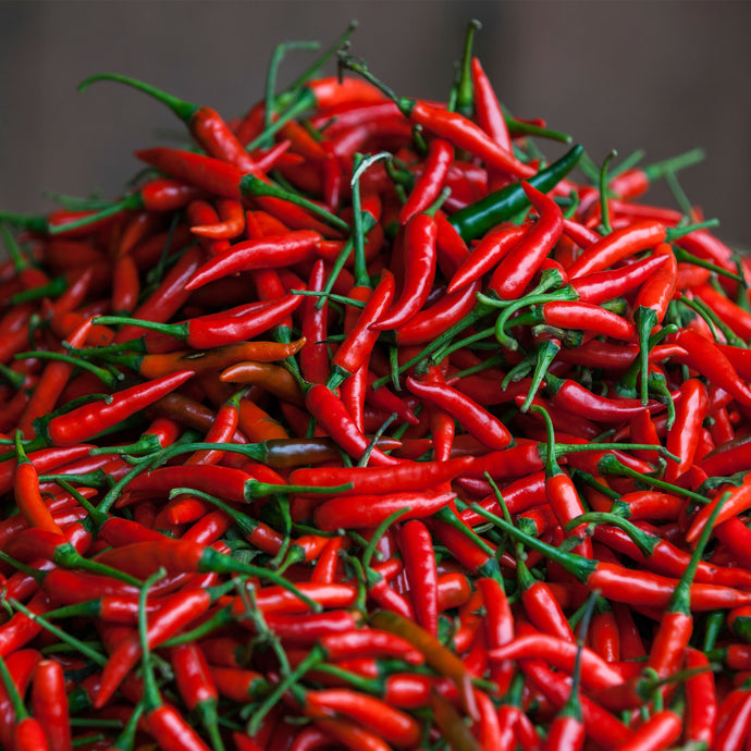 Dried Chilli Packs