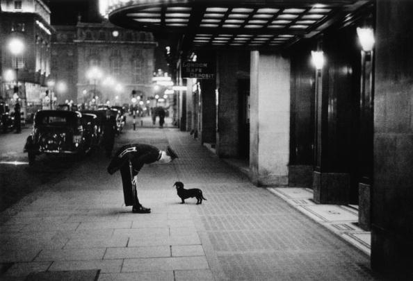 Commissionaire's Dog - Kurt Hutton