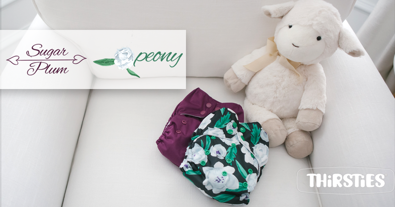 All In One Cloth Diapers: (Reviews/Ratings)