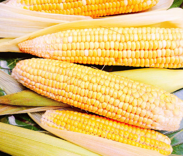 Lerato Corn Recipe