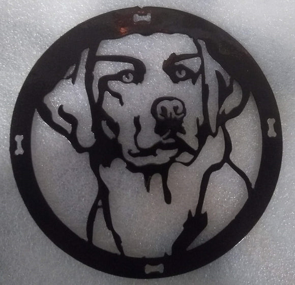Golden or Lab Face in a circle