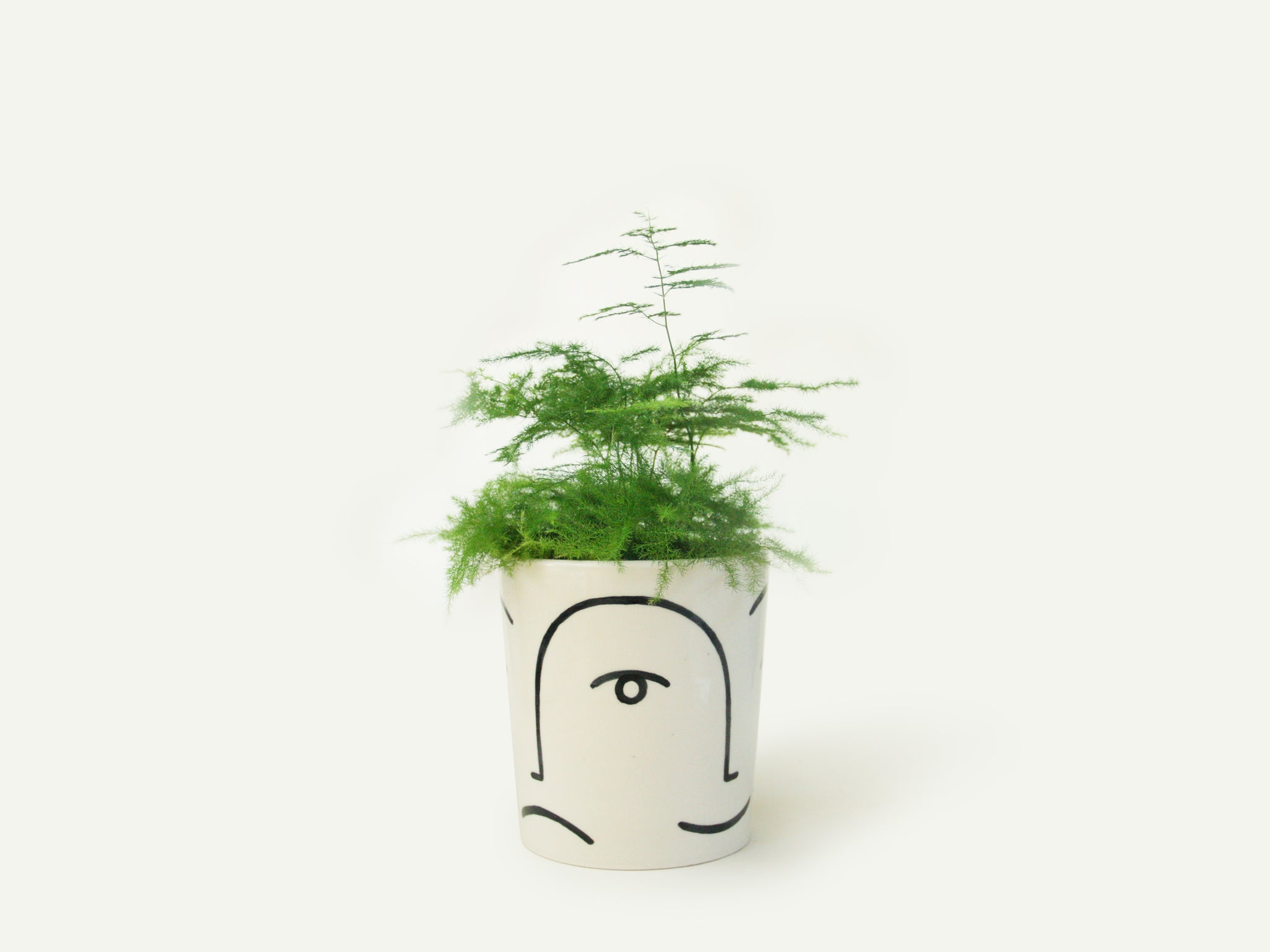 Face Planter / Utensil Holder