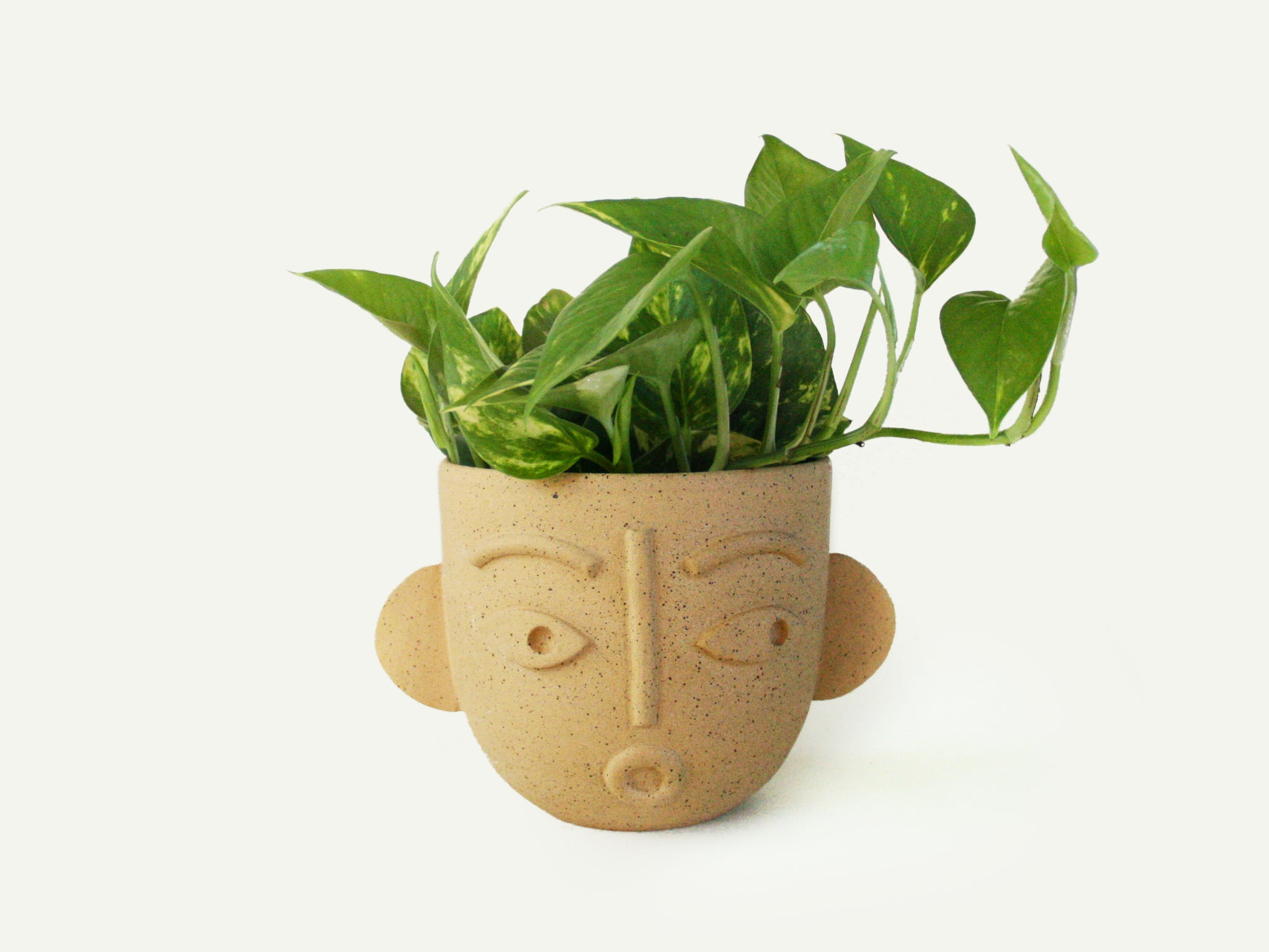 Dimensional Face Planter / Utensil Holder