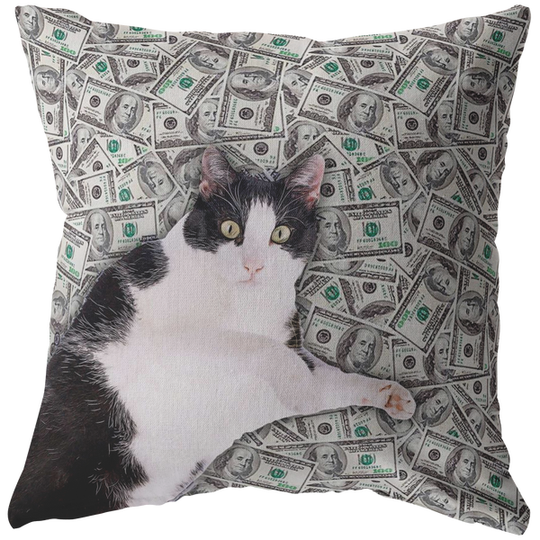 Money Cat Throw Pillow / Pillow Cover / Pillowcase | Funny Cat Meme Home Decor, Funny Cat Lover Gifts
