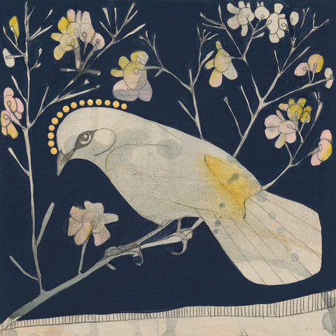 buff tailed thornbill and geraldton wax mini print