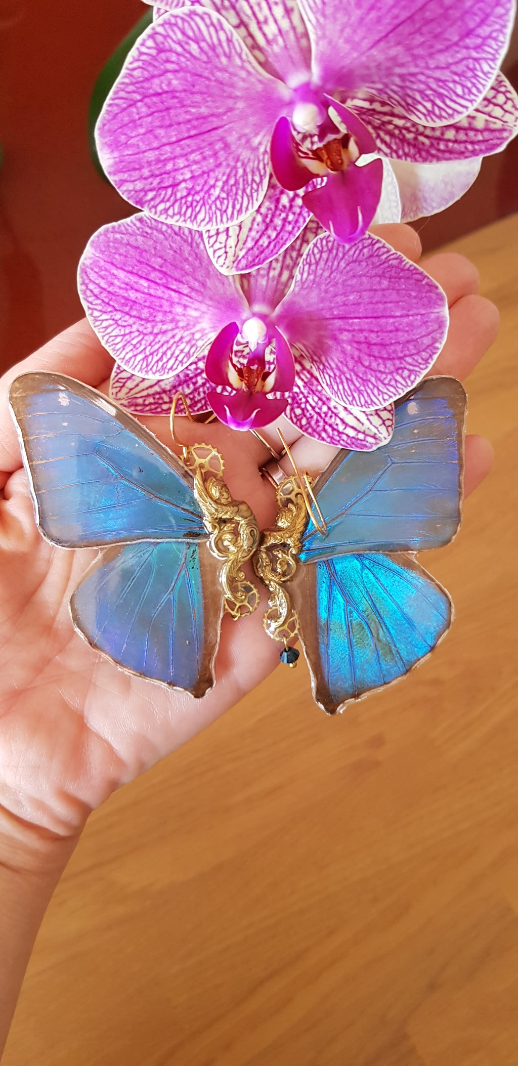 Morpho Sphynx Real Butterfly earrings