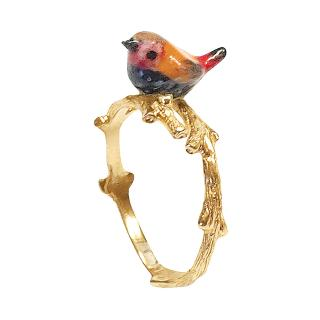Pink throated bird Ring