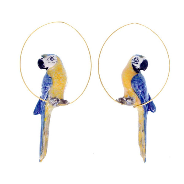 Blue Parrot Hoops earrings