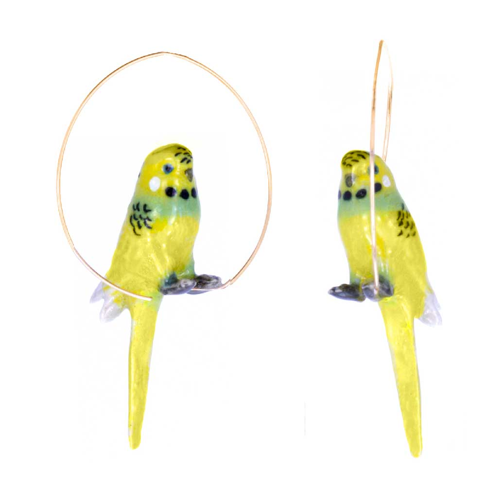 Yellow Budgerigar Birds Hoops earrings