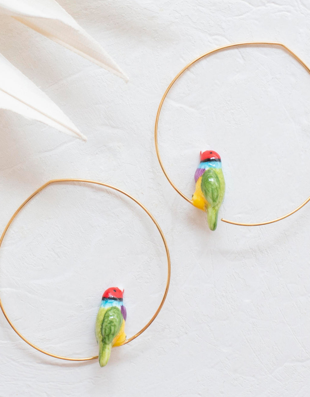 Gouldian Finch Bird Hoops earrings