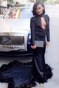 Applique Beading Feathers Fur Key-Hole High Neck Long Sleeves Long Prom Dress