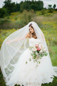 Chapel Length Veil with Beaded Floral Motifs