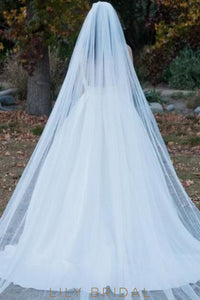 dreamy cathedral veil