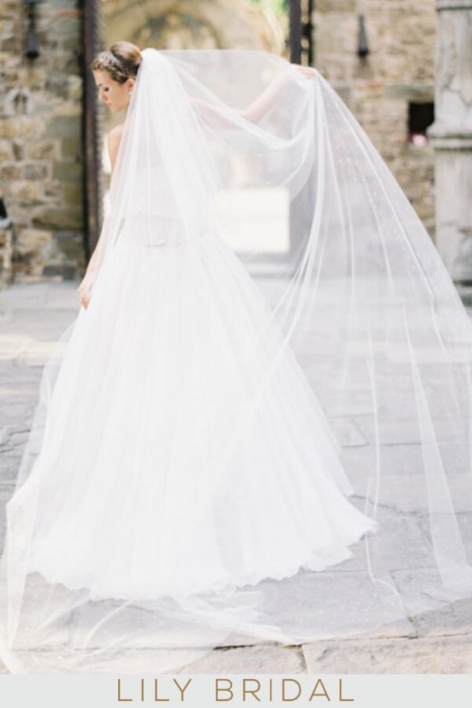 Eye-Catching Two Tier Chapel Wedding Veil with Diamante Scattered