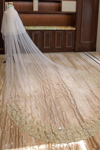 Two Layer Beaded Embroidery Edge Cathedral Length Bridal Veil