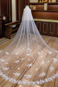 Two Layer Stereoscopic Floral Edge Cathedral Length Wedding Veil