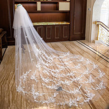 Two Tier Cut Edge Cathedral Veil with Embroidery Applique & Feather Scattered