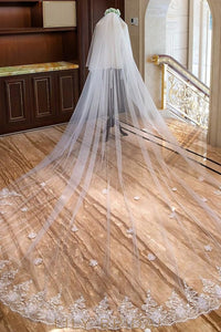 Two Tier Eyelash Edge Cathedral Veil with Beaded Floral Motif