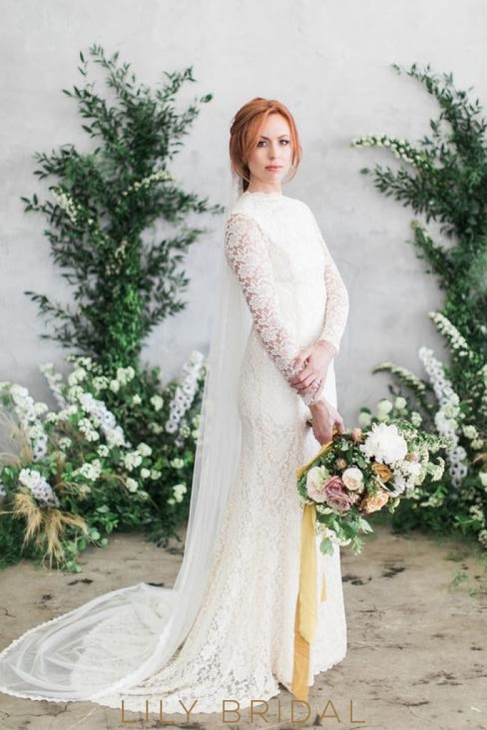 Vintage Lace Fit and Flare Wedding Dress with Dropped Waist