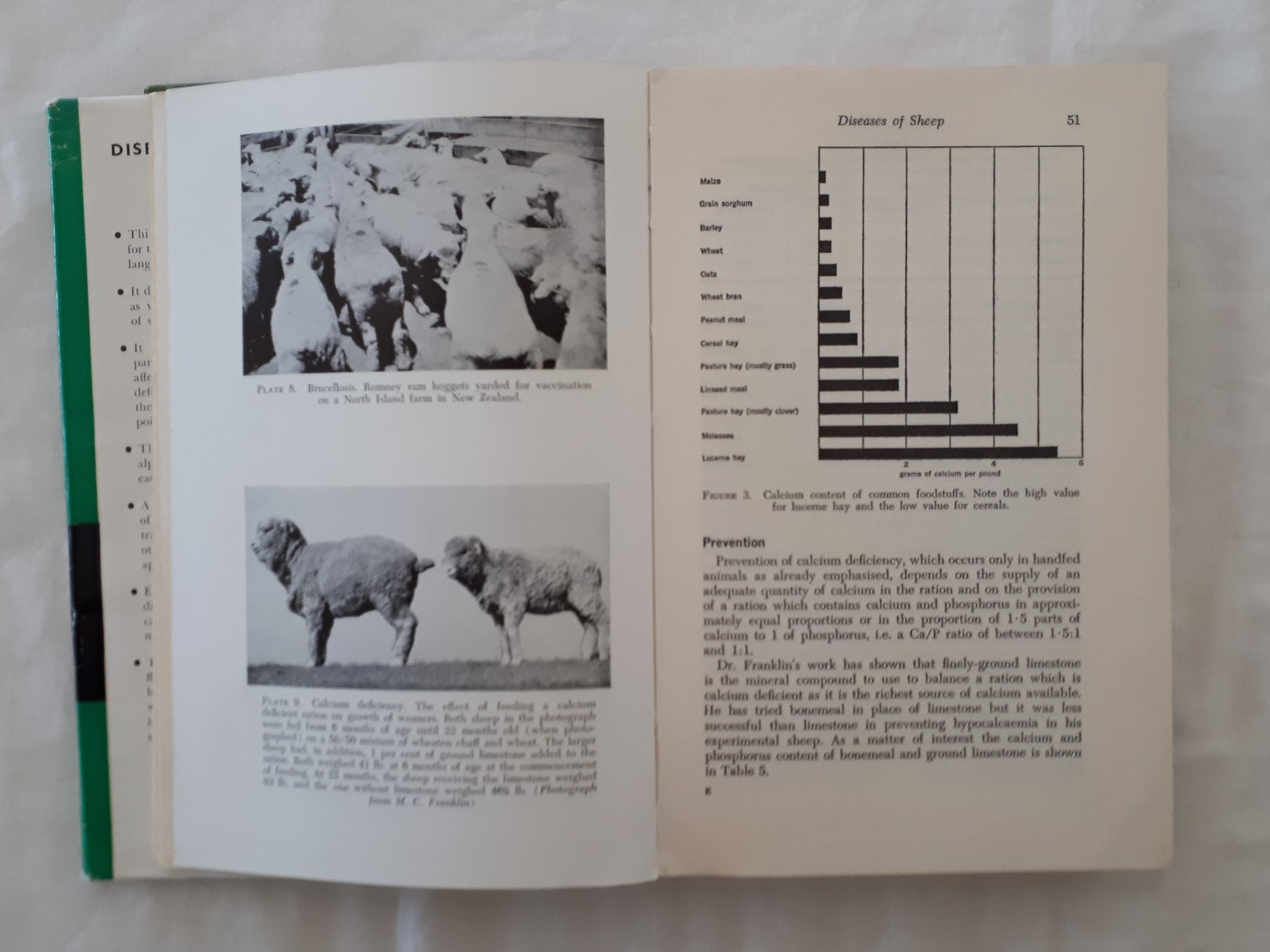 Diseases of Sheep by V  G  Cole – Morgan's Rare Books