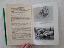 Load image into Gallery viewer, Diseases of Sheep by V. G. Cole