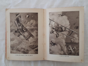 The Aircraft Picture Book