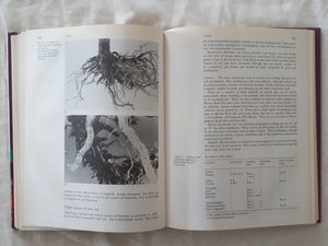 Diseases of Greenhouse Plants by J. T. Fletcher