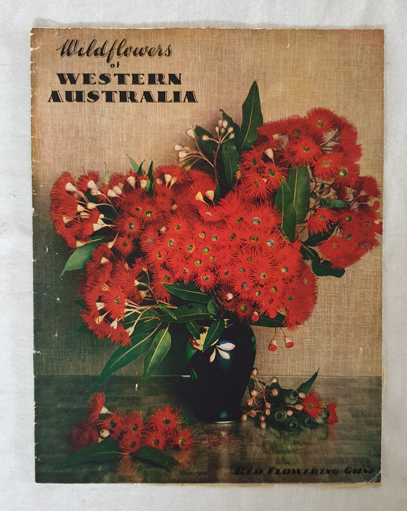 Wildflowers of Western Australia by C. A. Gardner