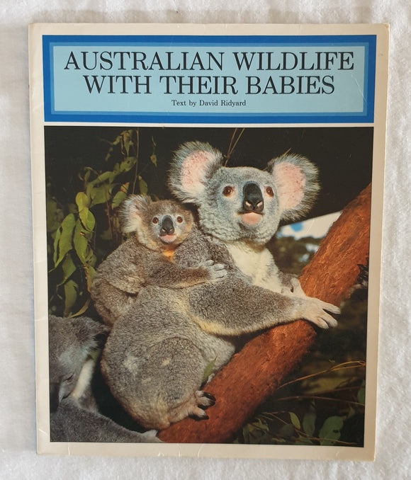 Australian Wildlife With Their Babies  Text by David Ridyard