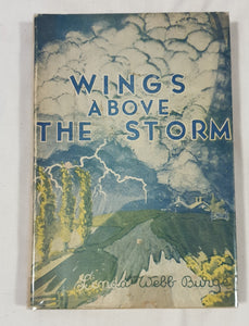 Wings Above The Storm by Linda Webb Burge