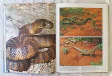 Load image into Gallery viewer, The Australian Bush by The Australian Women's Weekly