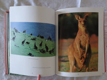 Load image into Gallery viewer, The Kangaroo by Michael Archer, Tim F. Flannery and Gorden C. Grigg