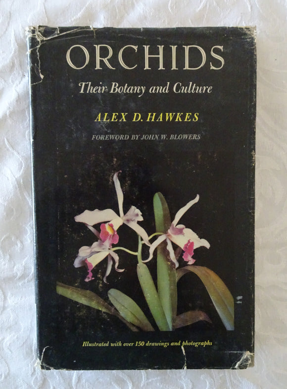 Orchids by Alex D. Hawkes
