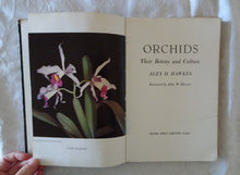Load image into Gallery viewer, Orchids by Alex D. Hawkes