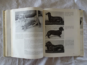 The World Encyclopedia of Dogs by Ferelith Hamilton