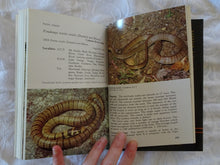 Load image into Gallery viewer, Reptiles of the Australian High Country by R. Jenkins and R. Bartell