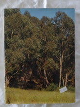 Load image into Gallery viewer, Under Mount Lofty by Robert Martin