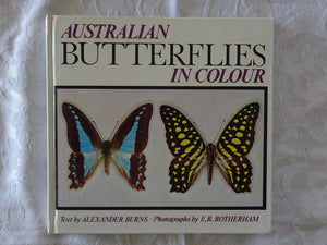 Australian Butterflies in Colour by Alexander Burns