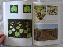 Load image into Gallery viewer, Viticulture - Volume 1 Resources + Volume 2 Practices by B.G. Coombe and P.R. Dry
