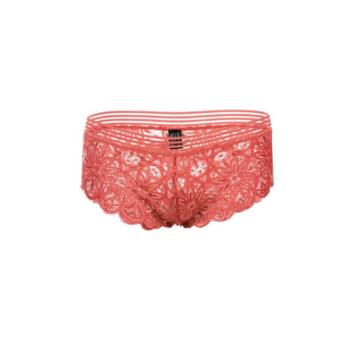Women All Lace Hipster Panties