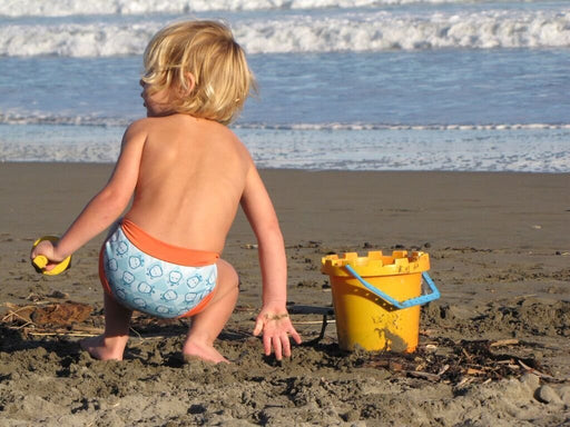 Pop In Swim Nappy (Large, Hippo)
