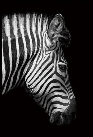Open image in slideshow, Zebra-Side-Profile-Black and White Animal Canvas Print Collection