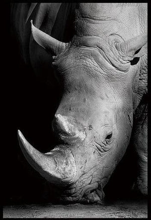 Open image in slideshow, Rino-Black and White Animal Canvas Print Collection