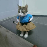 Dainty Cat Costume - How cute is this!?