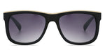 FRAME Matt Black Beige LENS Gradient Smoke