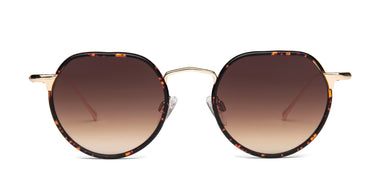 FRAME Matt Tortoise Shell LENS Gradient Brown