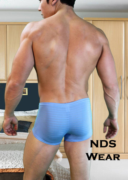 Blue NDS Sheer Stripe Boxer