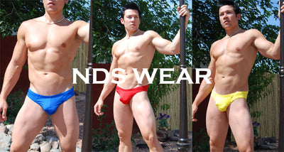 NDS Brief