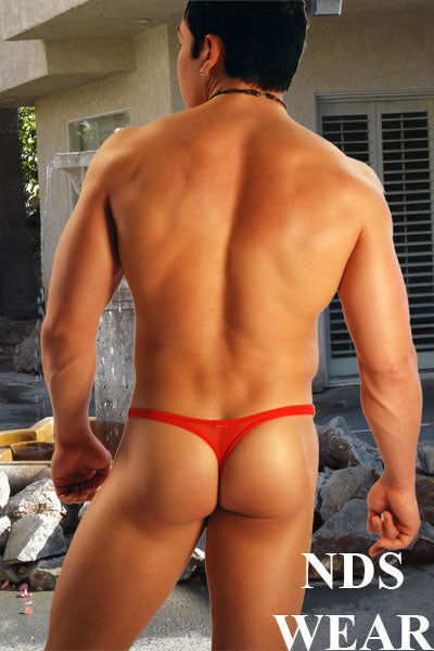 Sheer Racer Thong